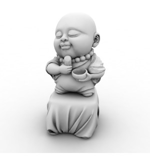 Young Buddhist Monk 3d Model