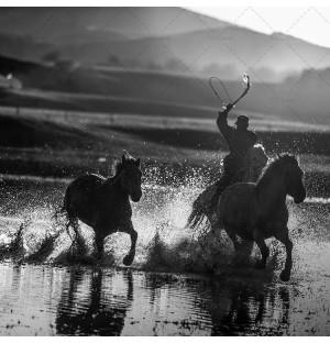 Wrangler and running horse 2