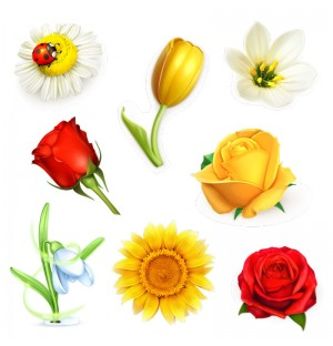 8 Flowers Photorealistic Graphic AI Vector