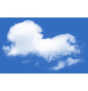 Cloud Transparent Background No. 27