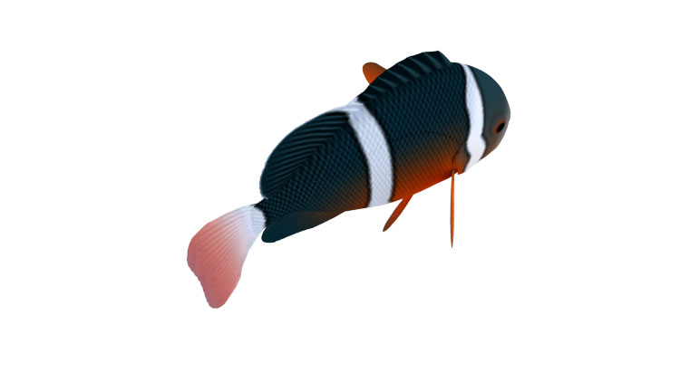3D Model Rigged Animated Fish