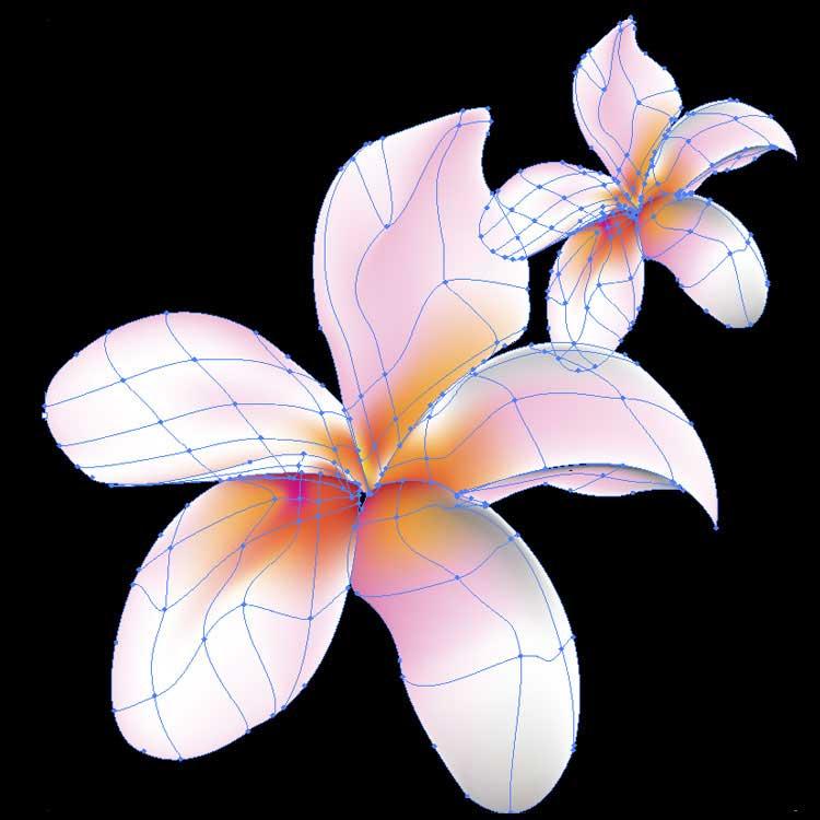 flower ai vector illustrator