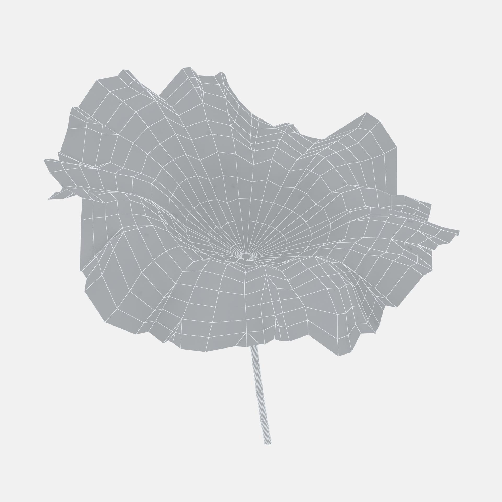 Ink material lotus leaf 3D model