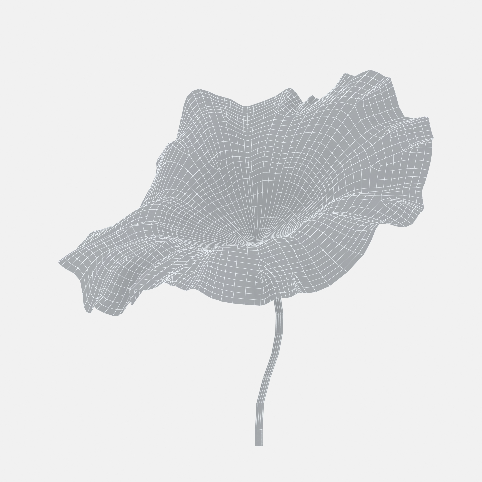 Ink material lotus leaf three-dimensional model 01