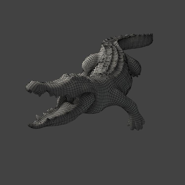 Crocodile 3D Model