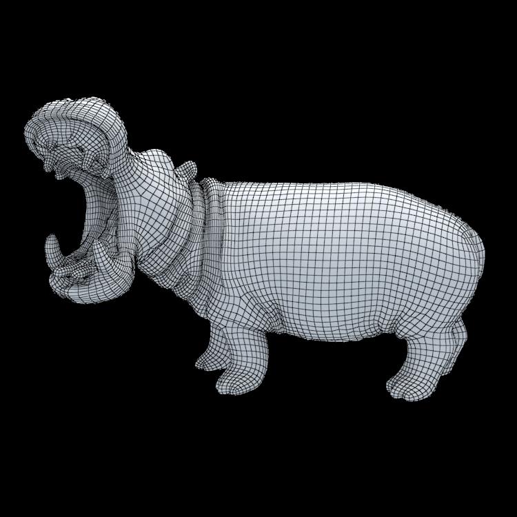 Hippo three-dimensional model