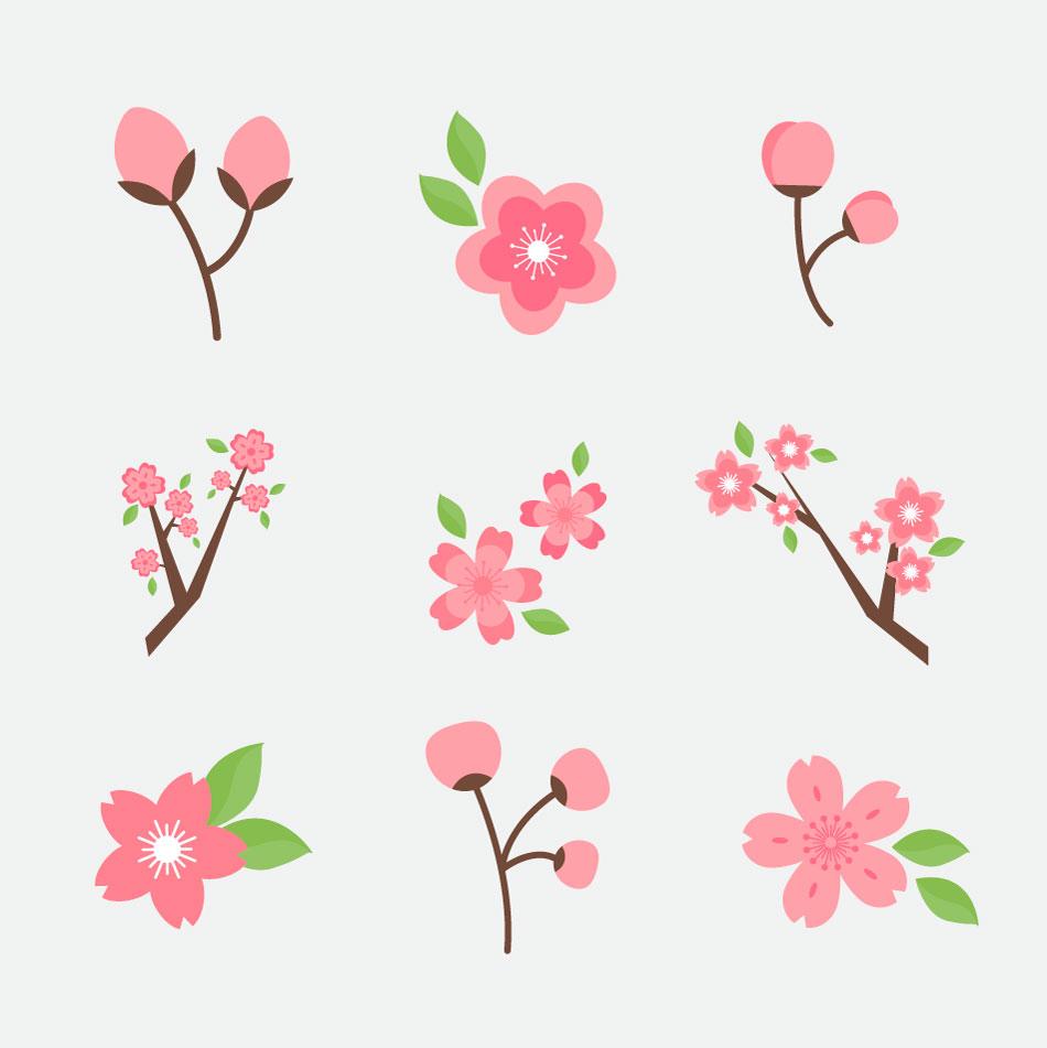 Ai Sakura