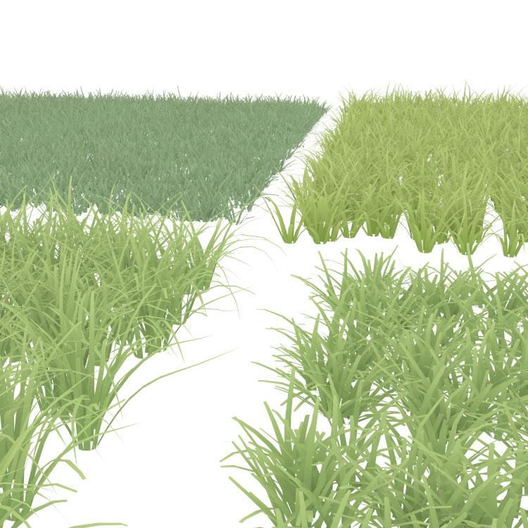 grassland grass 3d model material