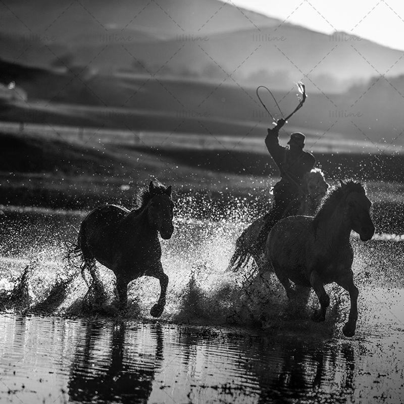 Изображение Wrangler and running horse 2