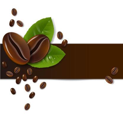 图片 简明咖啡豆图表广告AI传染媒介