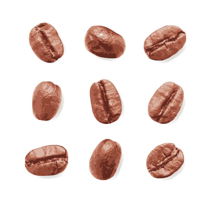 9 grains de café photoréalistes Graphic AI Vector