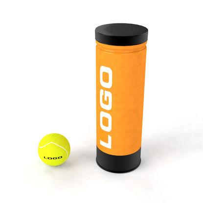 Pallina da tennis può modello 3d