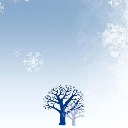 Kışın Kar Ağaçları Posteri resmi