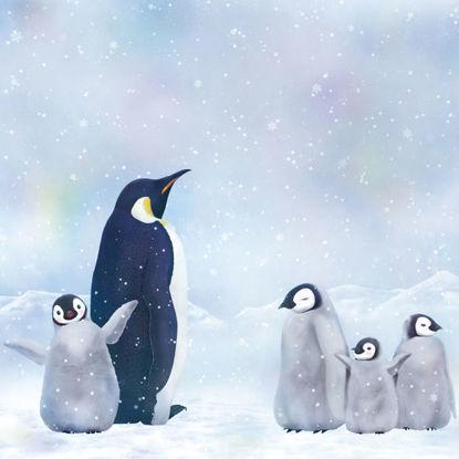 Emperor Penguin II