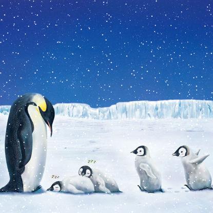 Emperor Penguin III