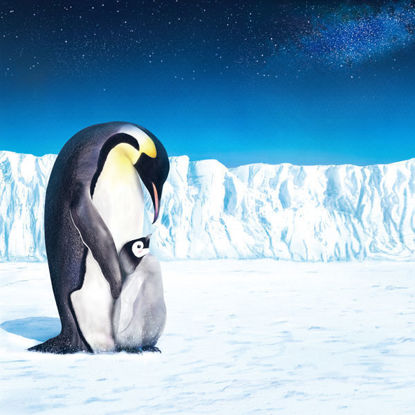 Emperor Penguin IV