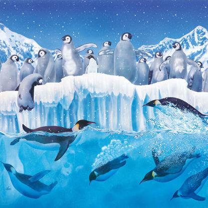 Emperor Penguin V