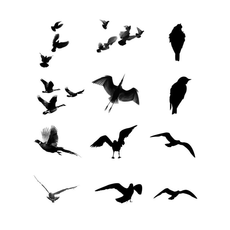 Bird Goose PS Brush