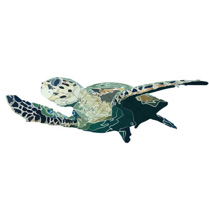 Turtle illustration vector and png