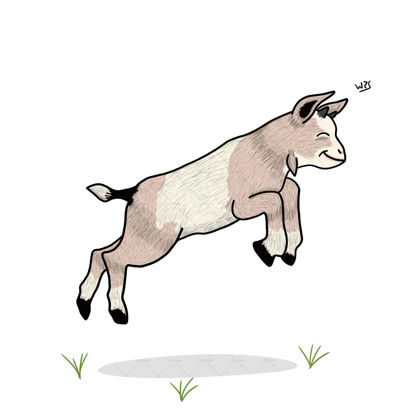 Baby goat illustration drawing