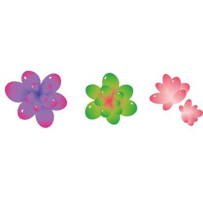 Vector illustration of cute succulents