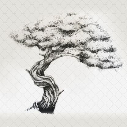 Tree illustration png