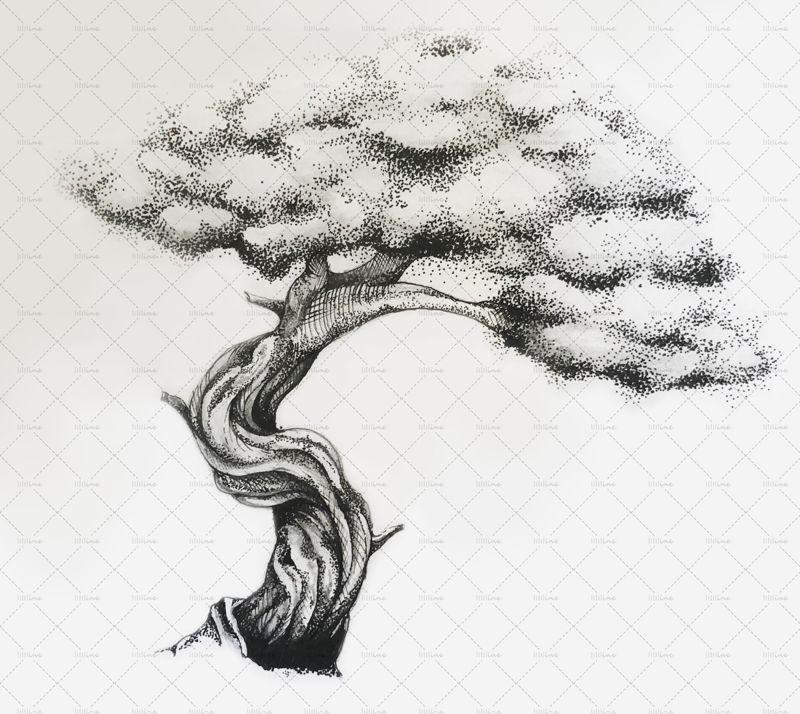 Tree illustration png