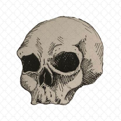 Skull illustration png