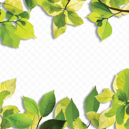 Leaves border frame png digital illustration