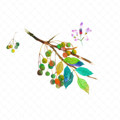 Neem watercolor