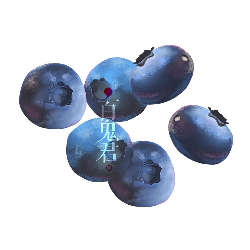 High resolution blueberry illustration