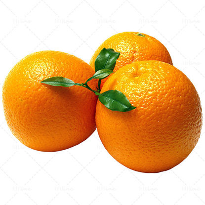 Real orange png