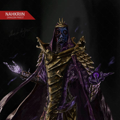 Nahkriin Dragon Priest illustration