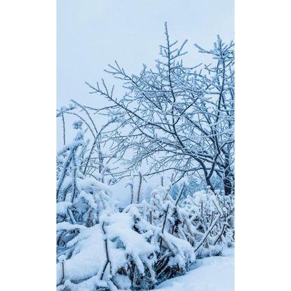 snow scene tree