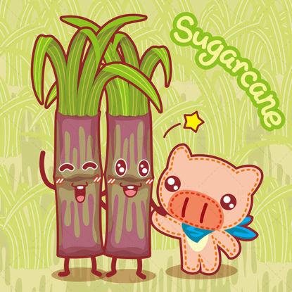 Cartoon fruit, cartoon sugar cane, cartoon pig, big nose pig, illustration vector eps
