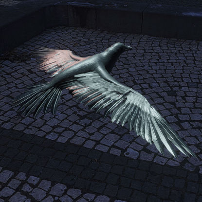 Crow flying 3d model