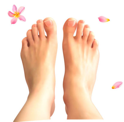 Photorealistic Foot Graphic AI Vector