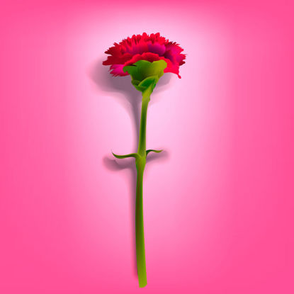 Photorealistic Flower Carnation Graphic AI Vector