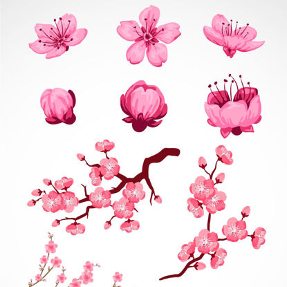 Hand Drawing Peach Blossoms Graphic AI Vector