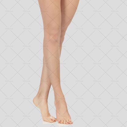 Female Leg psd