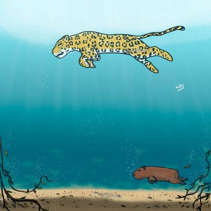 Jaguar and capybara swimming wallpaper hd mobile drawing