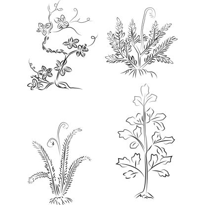 Hand drawn AI vector of flowers and plants