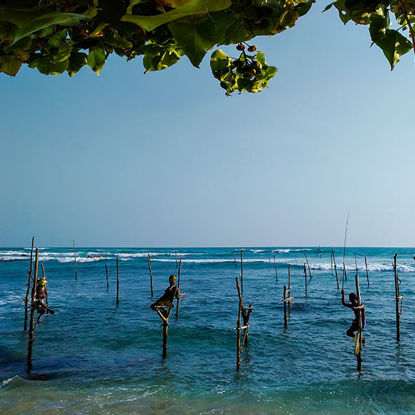 Pesca sobre zancos junto al mar en Sri Lanka