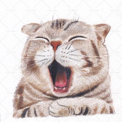 あくび猫の絵