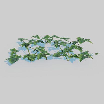 الزاحف الحوذان حزمة نموذج ثلاثي الأبعاد
