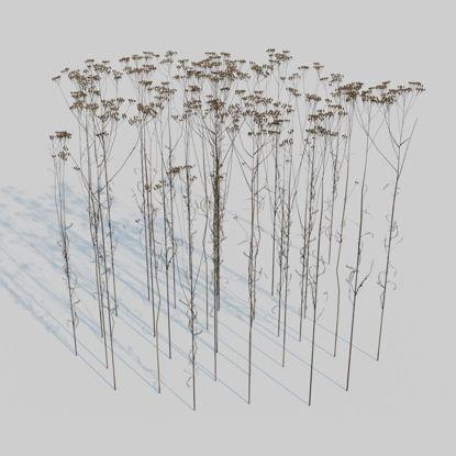 نموذج ثلاثي الأبعاد لحزمة الشمر الجافة