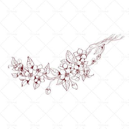 vector Hand drawn peach blossom branch line draft illustration