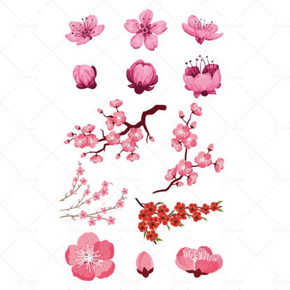 Vector various styles of peach blossoms
