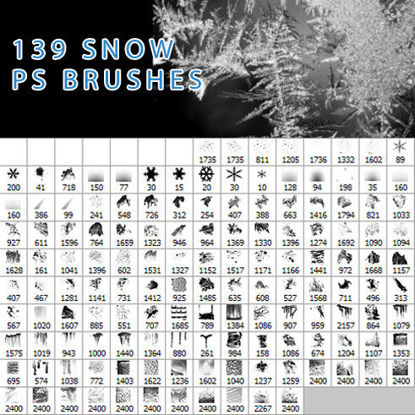 139 snow PS brushes