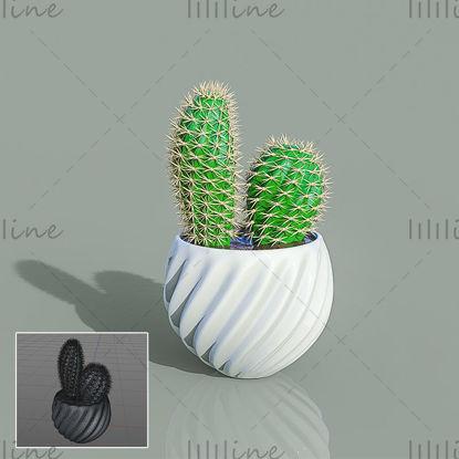 C4D зеленое растение в горшке кактус 3d модель